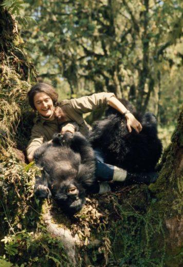 Dian Fossey Film